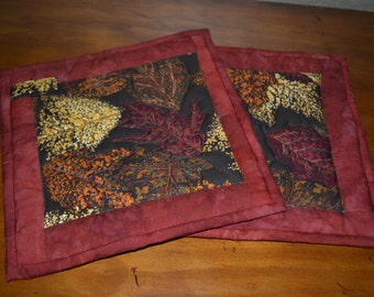 set of 2 Hot pads - 100% cotton outer fabric, bound together, top stitched with layer of insul-bright.  8 x 8 in size