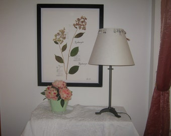 Herbarium natural dried hydrangeas
