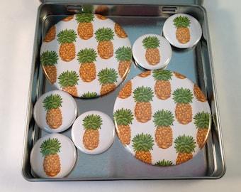 Pineapple Magnet Set