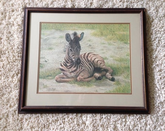 SALE! Charles Frace Signed Zebra Foal Limited Edition Custom Framed Print Lithograph