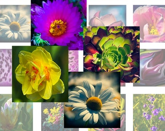 Flowers Instant Download Printable Digital collage sheet 1 inch squares (07) for jewelry making, scrapbooking, craft projects
