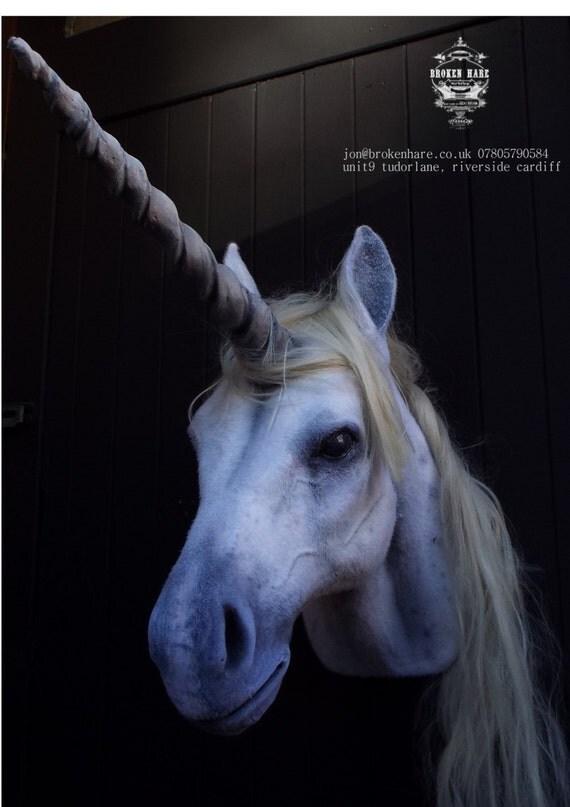 Animal Hair Plaster : Faux taxidermy unicorn head animal friendly by brokenhare