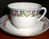 Early Shelley Rose Border Norman Shape Cup and Saucer