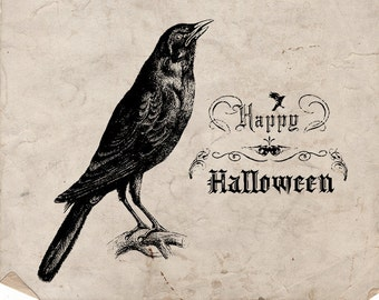 Image result for Happy Halloween crow