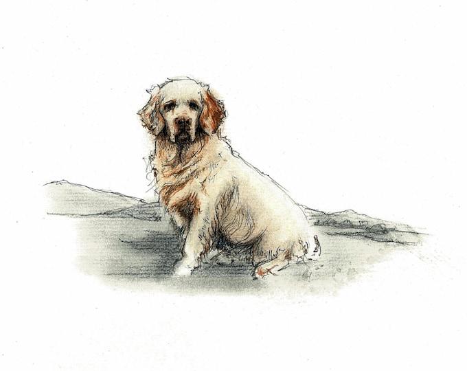 Clumber Spaniel Dog Art Vintage Style Print