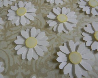 Die Cut 3D White Shasta Daisies (Set of 12) -