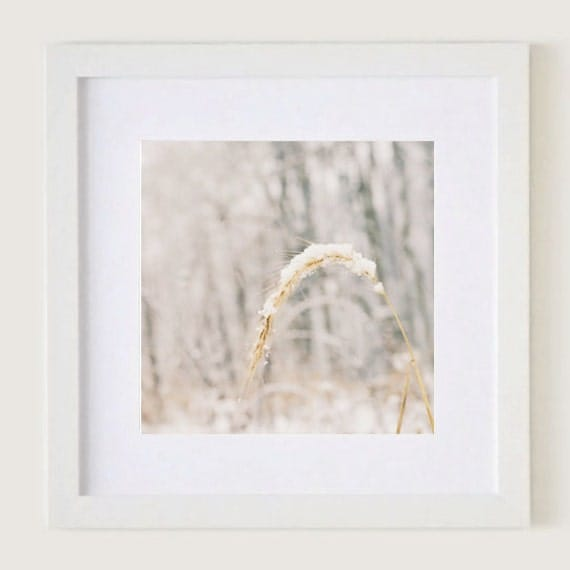 Soft Snow: Framed White 12x12