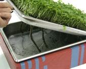 KIT- Large Microgreens Growing System (custom)