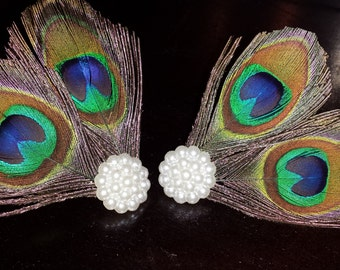 Beautiful Peacock Shoe Clip