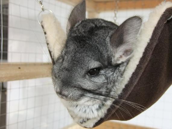Chinchilla Pet Hammock Rat Hammock Degus By Craftedinstitches