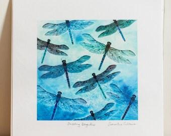 Dragonflies print - Dazzling Dragonflies