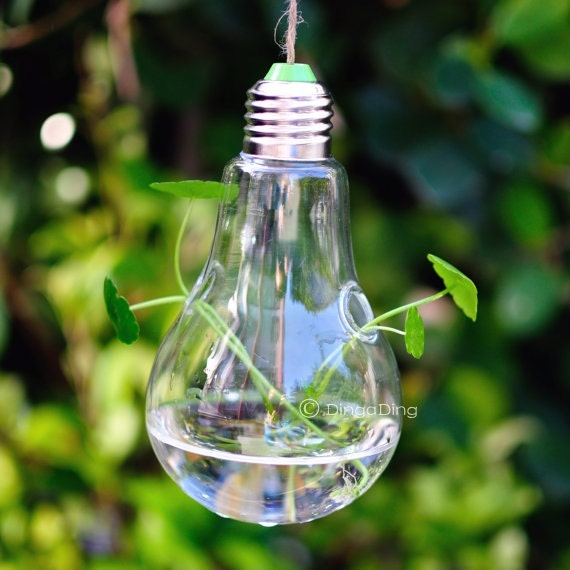 Hanging Light With Planter: Light Bulb Glass Hanging Planter Container By