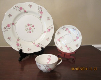Dinner plate, cup and saucer in Theodore Haviland Delaware pattern