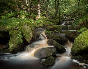 Water rushes through Padley Gorge, Peak District