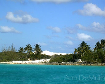 Photography, Sea, Palms, Torquoise Green, Blue Sky, White Sand, Children's Bay Cay, Bahamas, Fine Art Print, Home Decor, 5x7, 8x10, 11x14
