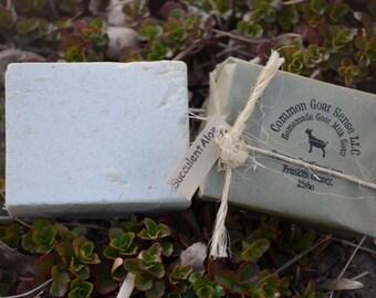 Succulent Aloe Goat Milk Castile Soap