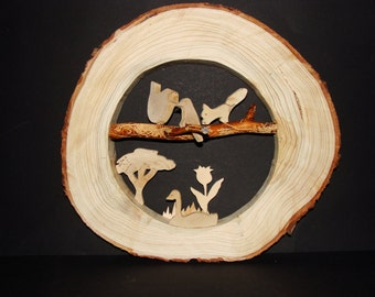 Tree disc image, nature