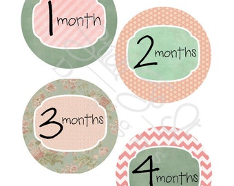 Baby Month Stickers, Monthly Stickers, Monthly Baby Sticker, Baby Shower Gifts, Baby Month Sticker Girl, Mint and Peach, G31
