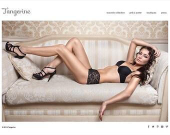 Shopify eCommerce Website Design Complete Custom Website Design Branding with Facebook Storefront 20 Products 5 Categories 網頁設計 電子商務網站設計