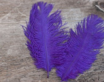 Purple Ostrich Feathers - Wedding Feathers - DIY Headband Feathers - 6 - 8 in.