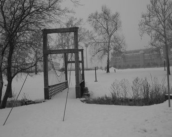 Snow covered Duck Pond