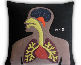 Anatomy Pillow ~ Science Project Collection
