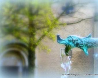 Fountain Photograph, Germany, Cologne, Water Fountain, Gargoyle, European Fountain, German Décor, Water Faucet, Fine Art Print, Soft Focus