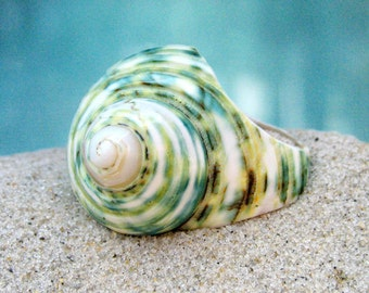 Polished Green Shell Ring