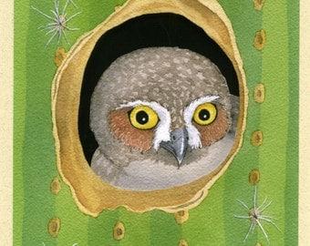 Elf Owl's Cozy Cactus Cavern Greeting Card