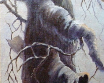 Study of a Tree oil painting canvas by Barbara Haviland--Barbsgarden