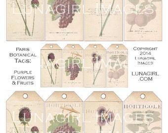 PARIS BOTANICAL TAGS Purple Flowers Fruit digital collage sheet Download vintage images floral Victorian art card shabby ephemera printables