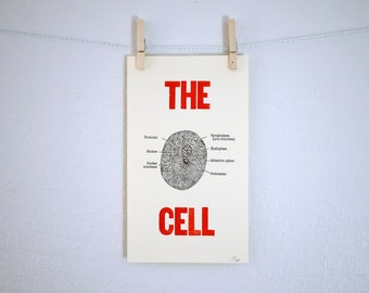 The Cell - Biology Letterpress Print