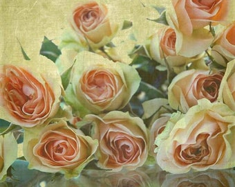Roses- Choose card or Photo, Farmer's Market, Spring Flowers, Peach, Pink, soft yellow