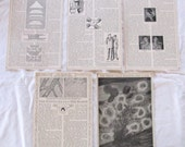 "vintage ephemera- SCIENCE & BIOLOGY --antique prints from ""Book of Knowledge"" 1912 (5 pages)"