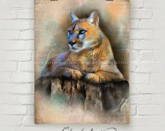 Kia... Cougar... XL Giclee Print...  Wildlife Study Painting Print...Large Cat... Wildcat... You Choose Size