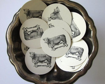 Cow Tags Round Paper Gift Tags Set of 10