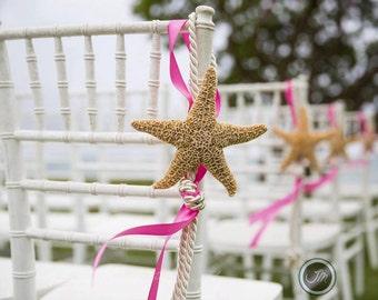 "Beach Wedding Starfish Chair Decoration - Natural White or Sugar Starfish (6""-8"") w/ Cording & Ribbon - 24 Ribbon Colors"