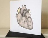 Anatomical Heart Illustration Card