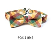 Field Day Kids Bow Tie // Limited Edition