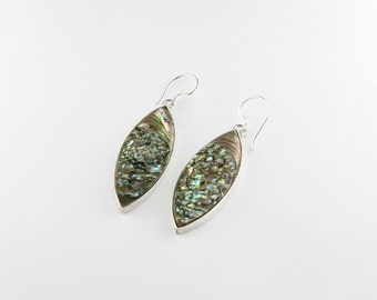 Stunning Abalone Earrings