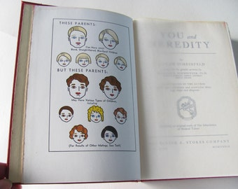 1939 You and Heredity Book by Scheinfeld
