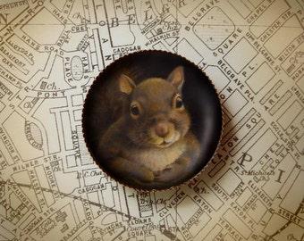 Squirrel Brooch - Squirrel Pin - Round - Squirrel Portrait - Squirrel Art - Animal Portrait