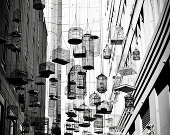 BIRD CAGE Black & White Still Life Photo 8 x 12 Print, Bird Cages of Angel Place, Sydney, Black, White, Silhouette, Monochrome, Travel Photo
