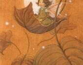Autumn Leaf Fairy Signed 8.5x11 Print Illustration