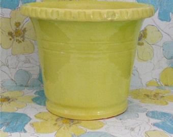 Pie Crust Edge Chartreuse Planter