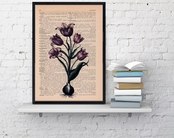 Summer Sale Wall art Vintage Illustration Lilac Tulip Print- Book botanical studio print, decor, gift, wall hanging,flower BFL060
