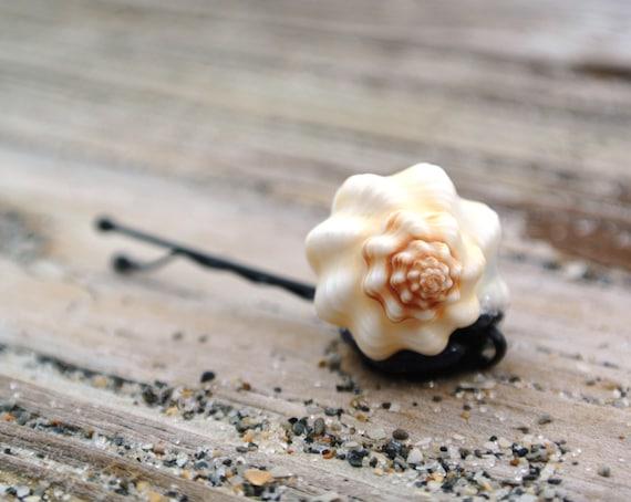 Shell hair pin bobby natural seashell hair accessory pin for Seashells for hair