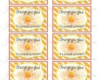 "instant download...  DIY Printable Appreciation ""Orange You Glad"" Gift Tags"