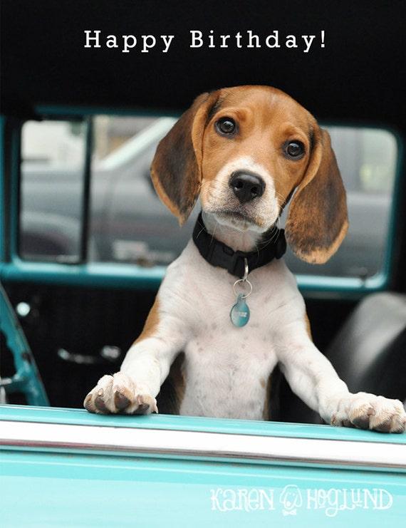 Happy Birthday Dog Quotes ~ Items similar to beagle puppy birthday cards set of