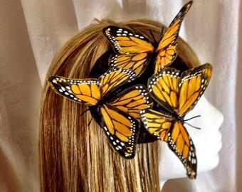 Feather Monarch butterfly fascinator derby hat